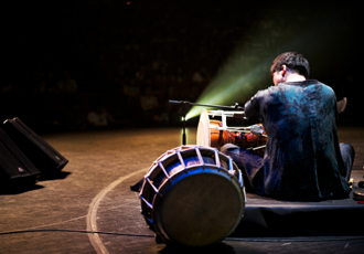 Fantasia performance (2014)